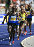 Athlétisme d'or international de ligue d'Istaf Berlin Photo libre de droits