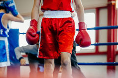 Athlete amateur boxer Stock Photography