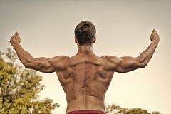 Athlete with bare torso on grey sky. Bodybuilder showing muscles, biceps and triceps. Man or sportsman raising arms, back view. Fitness and sport. Healthy royalty free stock image