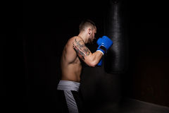 Athlete boxer man punching a punching bag Royalty Free Stock Images