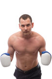Athlete with boxing gloves on a white background royalty free stock photo