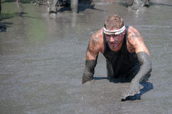 Athlete crawls through mud. An Athlete participating in the 2014 mudathlon, crawls through muddy water at this messy sport event Stock Photography