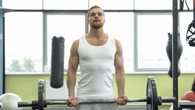 Athlete doing exercise for biceps with barbell. young muscular man trains at the gym stock images