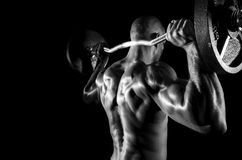 Athlete doing shoulder press Royalty Free Stock Photo
