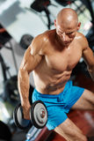 Athlete doing triceps workout in gym Royalty Free Stock Image