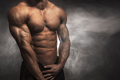 Athlete with fit physique. Close-up of male athlete with muscular body Royalty Free Stock Photos
