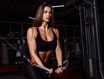 Athlete girl in sportswear working out and training her arms and shoulders with exercise machine in gym. Stock Image