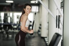Athlete girl in sportswear working out and training her arms and shoulders with exercise machine in gym royalty free stock photo