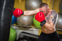 The athlete in the gym. Exhausting classes. Work on your body. Sophisticated power exercises Royalty Free Stock Photos