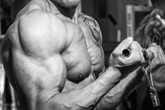 The athlete in the gym Royalty Free Stock Photography