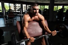 Man In The Gym Exercising Biceps With Barbell. Athlete In The Gym Performing Biceps Curls With A Barbell royalty free stock image