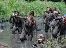 Athlete having messy fun in the mud river. Athletes participating in the 2014 mudathlon, crawl, stagger and walk through the huge muddy water river, to the Stock Photography