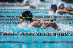 Athlete an Italian swimming contest called `Piskeo Trophy`. Athlete in a national swimming swimming national swimming contest named `Piskeo Trophy` Memorial royalty free stock photography