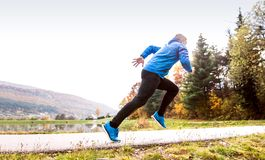 Athlete at the lake running against colorful autumn nature. Young athlete in blue sports jacket at the lake running against colorful autumn nature Stock Photos