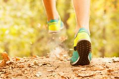 Athlete makes a morning run through the autumn forest. Foliage on a park treadmill and athlete`s feet. stock images