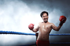 Athlete male asian boxer performing uppercut Royalty Free Stock Image