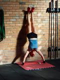 Handstand Push Ups. high intensity royalty free stock photo