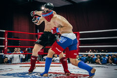 Athlete mixed martial arts deals cross hand on head of opponent Royalty Free Stock Photo