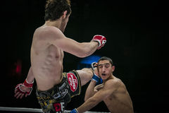 Athlete mixed martial arts fighter strikes his foot on head of his opponent Stock Image