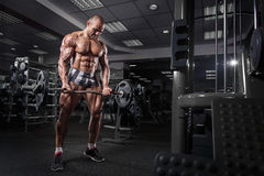 Athlete muscular bodybuilder training arms on simulator in the gym Royalty Free Stock Image
