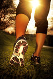 Athlete runner feet running on grass. Closeup on shoe. Woman fitness sunrise jog workout wellness concept Royalty Free Stock Image