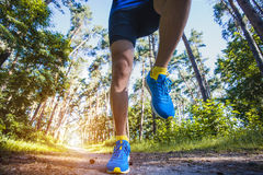 Athlete running through the woods. Royalty Free Stock Photography
