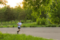 The athlete runs along the asphalt road. The guy in the white T-shirt in the summer Royalty Free Stock Photography
