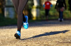 Athlete runs in the Park during training Royalty Free Stock Image