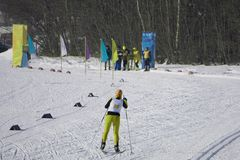 Athlete runs skiing cross-country at the finish line stock photo