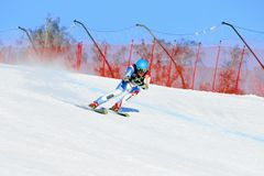 athlete skier in super giant slalom during National Cup alpine skiing Stock Photo