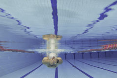 Athlete swimming training Royalty Free Stock Photography