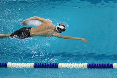 Athlete swims freestyle Royalty Free Stock Photography
