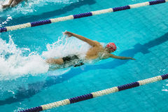 Athlete swims freestyle track of pool Royalty Free Stock Photo