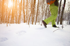 The athlete walks in the snow. Royalty Free Stock Photos