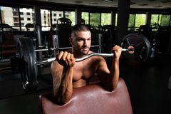 Athlete Working Out Biceps In A Gym. Athlete In The Gym Performing Biceps Curls With A Barbell royalty free stock images