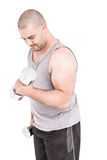 Athlete working out with dumbbells. On white background Royalty Free Stock Images