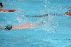 Athleten, die auf einem Schwimmbad schwimmen lizenzfreie stockbilder