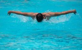 Athleten, die auf einem Schwimmbad schwimmen lizenzfreies stockfoto