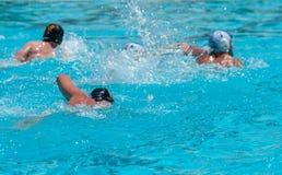 Athleten, die Freistil auf einem Swimmingpool schwimmen stockfotografie