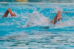 Athleten, die Freistil auf einem Swimmingpool schwimmen lizenzfreie stockfotos