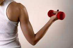 Athleten-Frauenhand der Eignung vorbildliche mit rotem Dummkopf auf grauem Studiohintergrund stockbilder