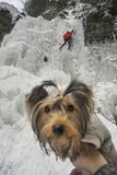 Athleten an Manyavsky-Fällen in Winter lizenzfreie stockfotos