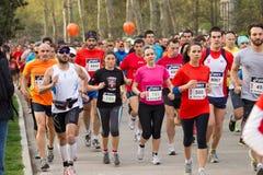 Athleten vom halben Marathon stockbild