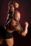 Athletenbodybuilder, der Muskeln der Rückseite und der Arme demonstriert Stockfotos