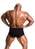Athletenbodybuilder, der Muskeln der Rückseite und der Arme demonstriert Stockbilder