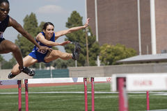 Athletes Clearing Hurdles In Race Stock Photo
