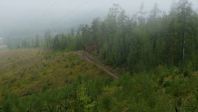 Athletes cyclists rides on mountain. Thick fog over forest stock video