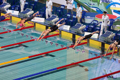 Athletes dive into the pool Stock Image