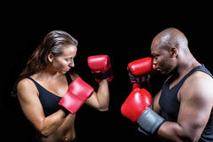 Athletes with fighting stance. Against black background royalty free stock image