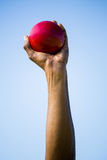 Athletes hand holding shot put ball Stock Photo